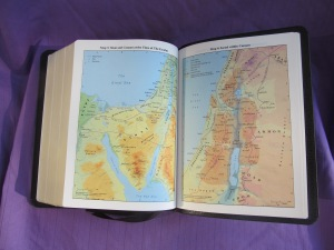 The Cambrige maps  found in the NKJV Clarion Reference Bible--different from the Moody Bible Atlas maps found in the older ESV Clarion Reference Bible.