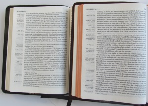 Left: NKJV Clarion.  Right:  ESV Clarion, both open to Numbers 16